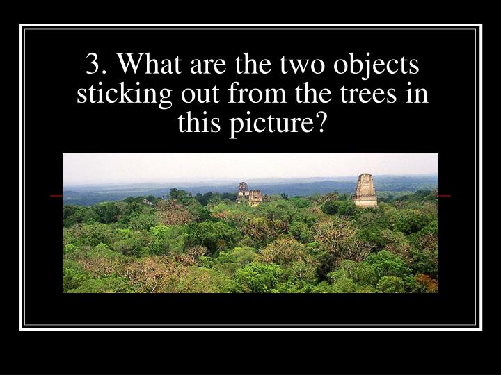 3. What are the two objects sticking out from the trees in this picture?