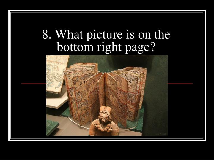 8. What picture is on the bottom right page?