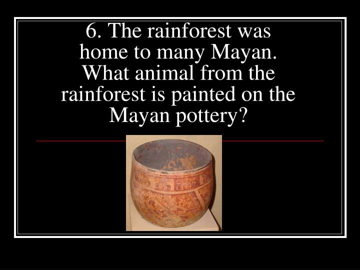 6. The rainforest was home to many Mayan. What animal from the rainforest is painted on the Mayan pottery?