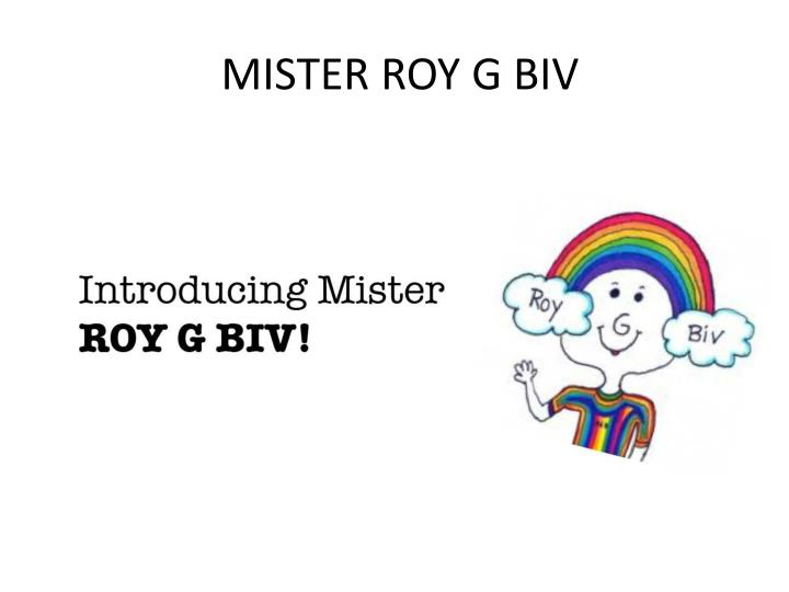 MISTER ROY G BIV