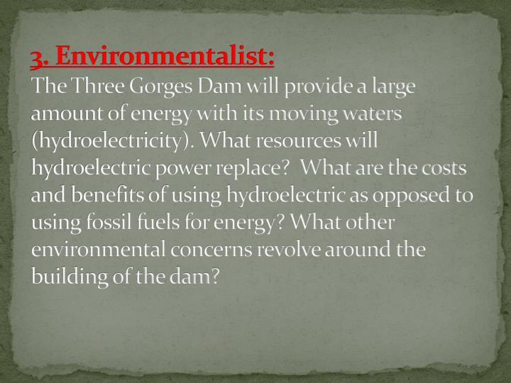 3. Environmentalist:
