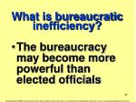 what is bureaucratic inefficiency