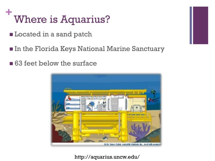 Where is Aquarius?
