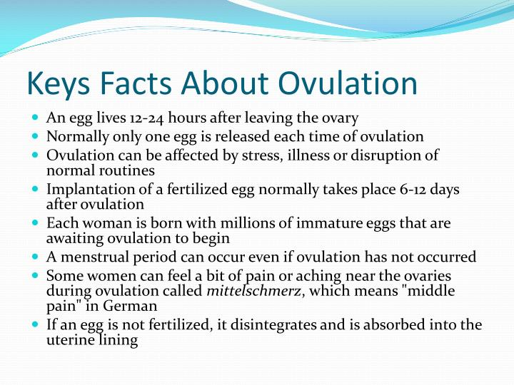 Keys Facts About Ovulation