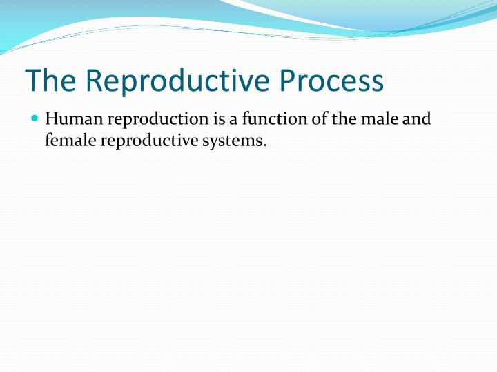 The reproductive process