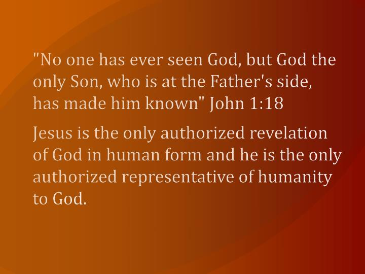 """""""No one has ever seen God, but God the only Son, who is at the Father's side, has made him known"""" John 1:18"""
