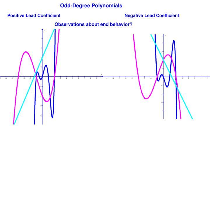 Odd-Degree Polynomials