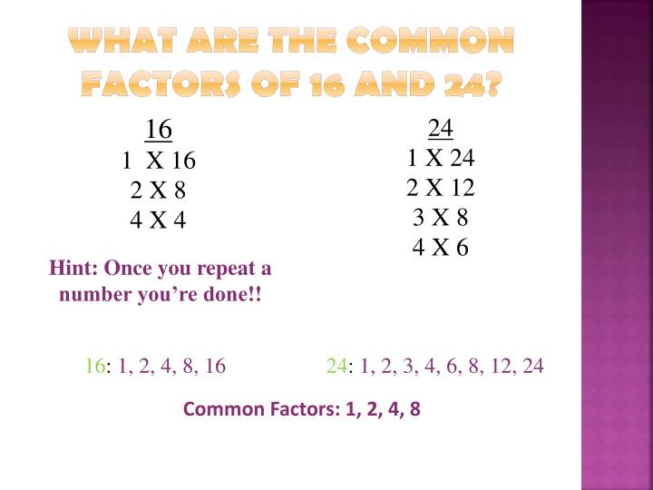 What are the common factors of 16 and 24?