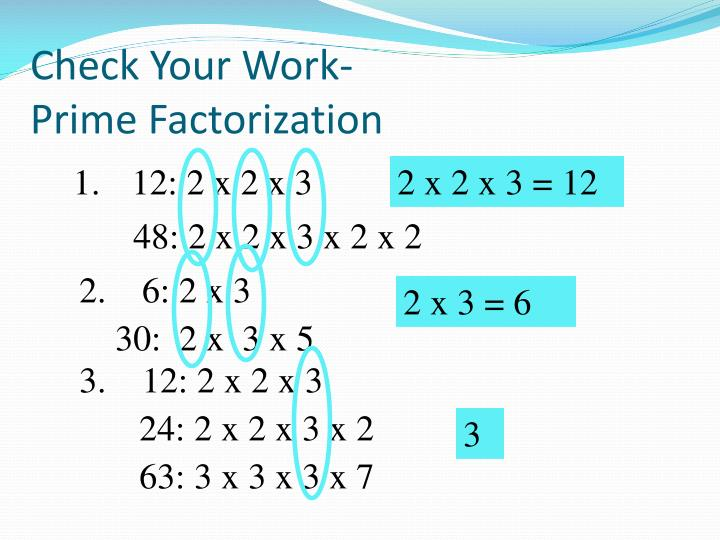 Check Your Work-