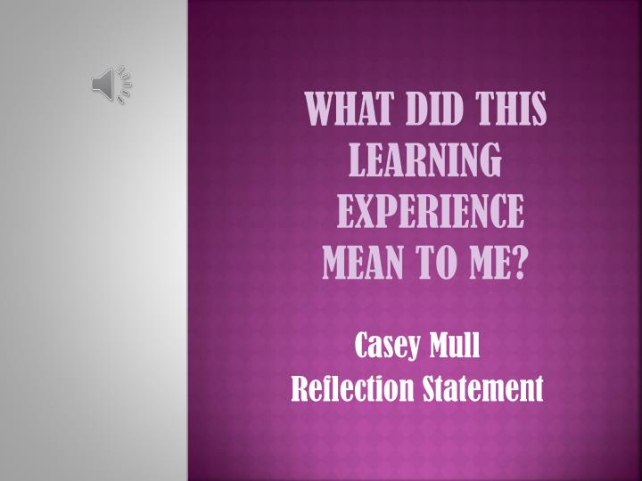 What did this learning experience mean to me