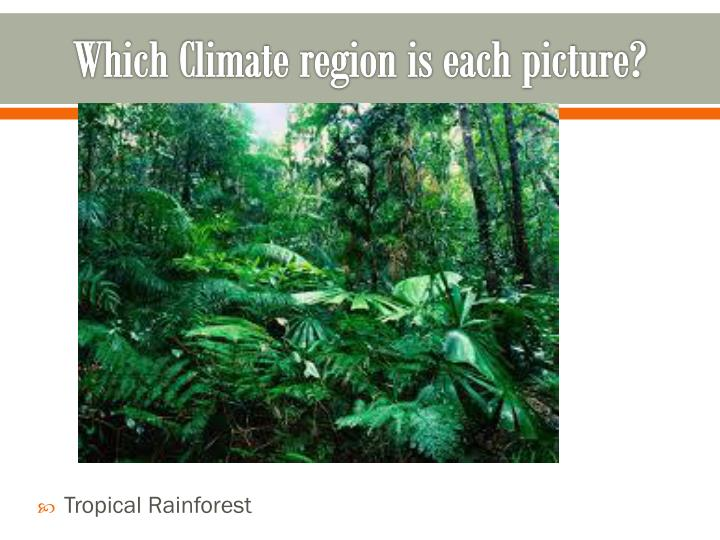 Which Climate region is each picture?