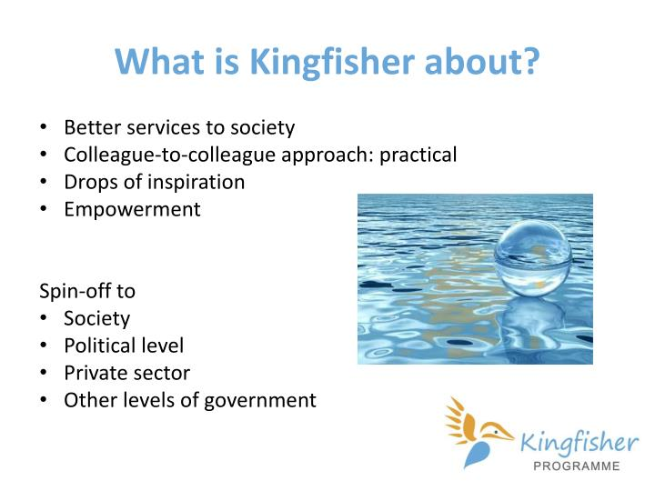 What is kingfisher about