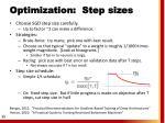optimization step sizes