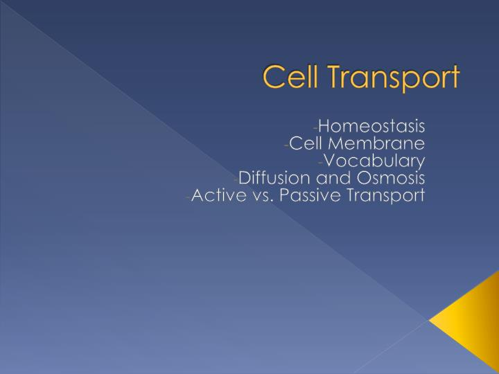 cell transport n.