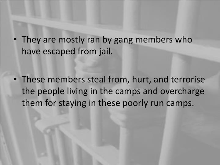 They are mostly ran by gang members who have escaped from jail