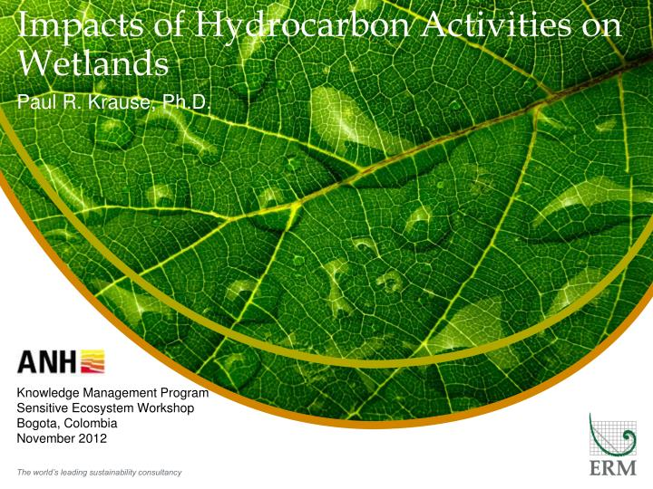 impacts of hydrocarbon activities on wetlands n.