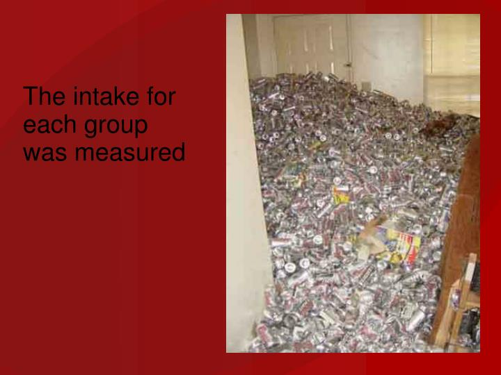 The intake for each group was measured