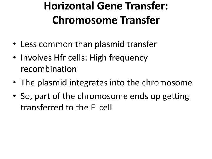 Horizontal Gene Transfer: Chromosome Transfer