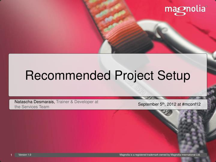recommended project setup n.