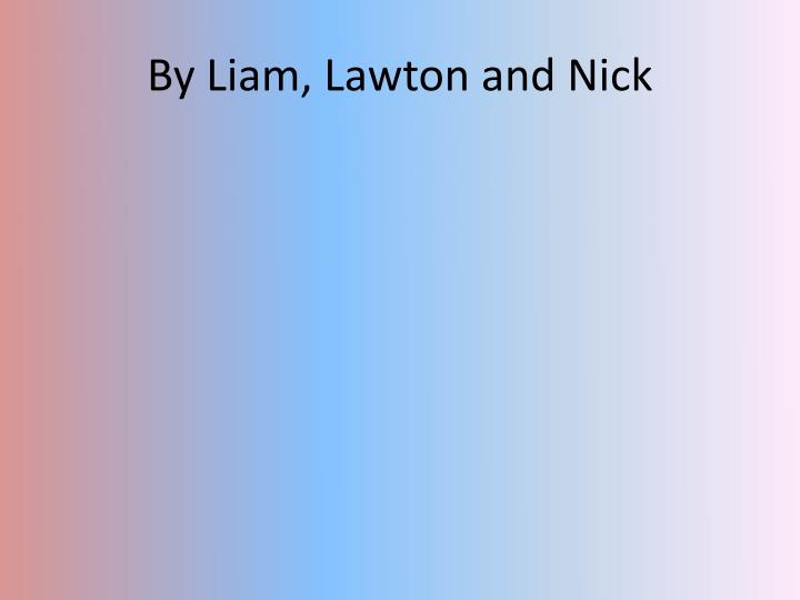 By Liam, Lawton and Nick