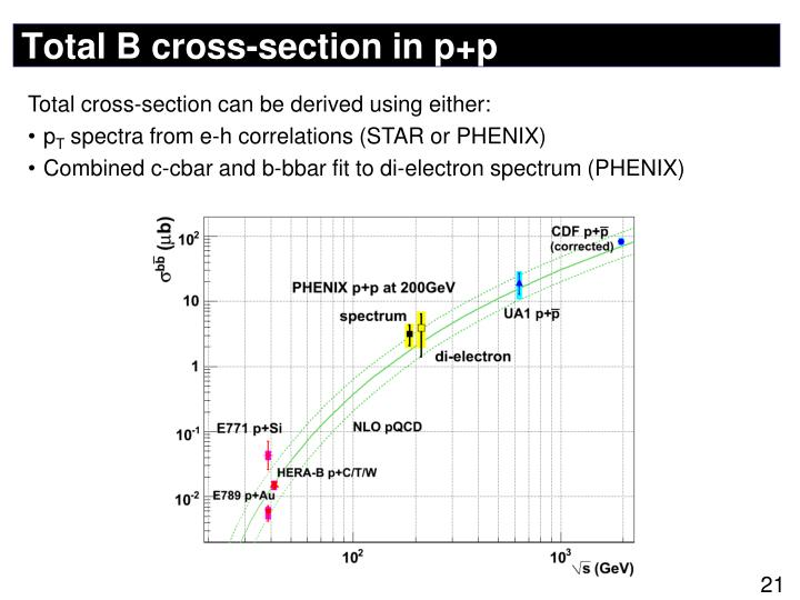 Total B cross-section in p+p
