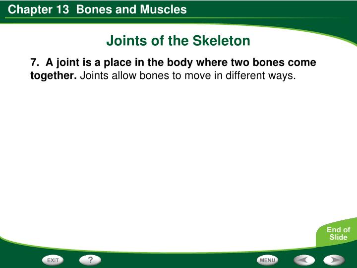 Joints of the Skeleton