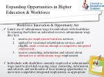 expanding opportunities in higher education workforce1