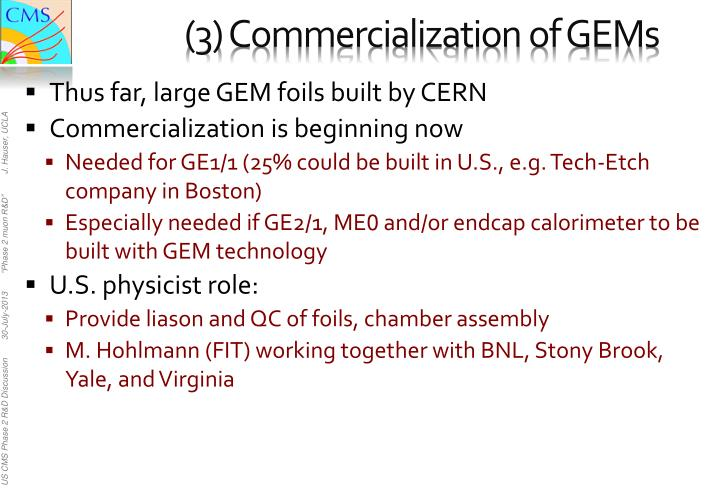 (3) Commercialization of GEMs
