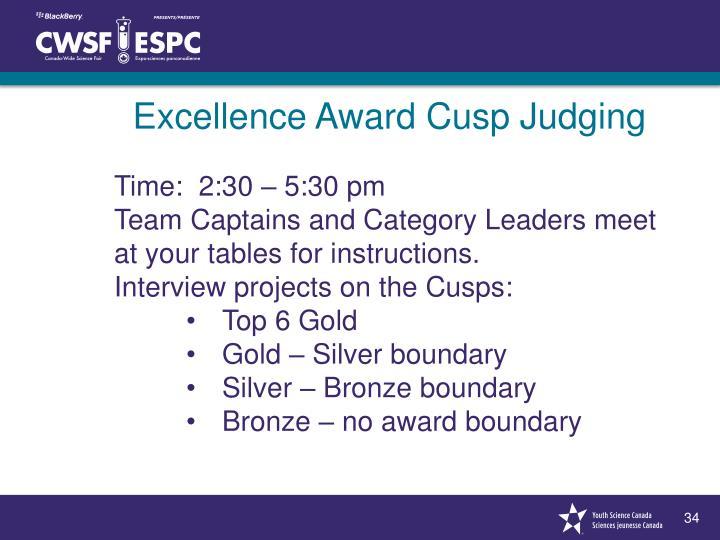 Excellence Award Cusp Judging