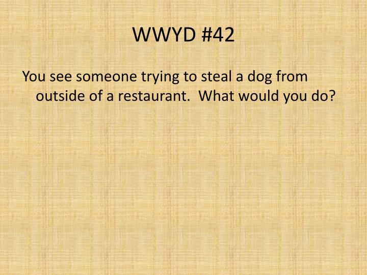 WWYD #42