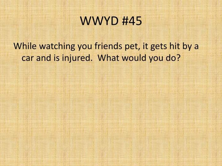 WWYD #45