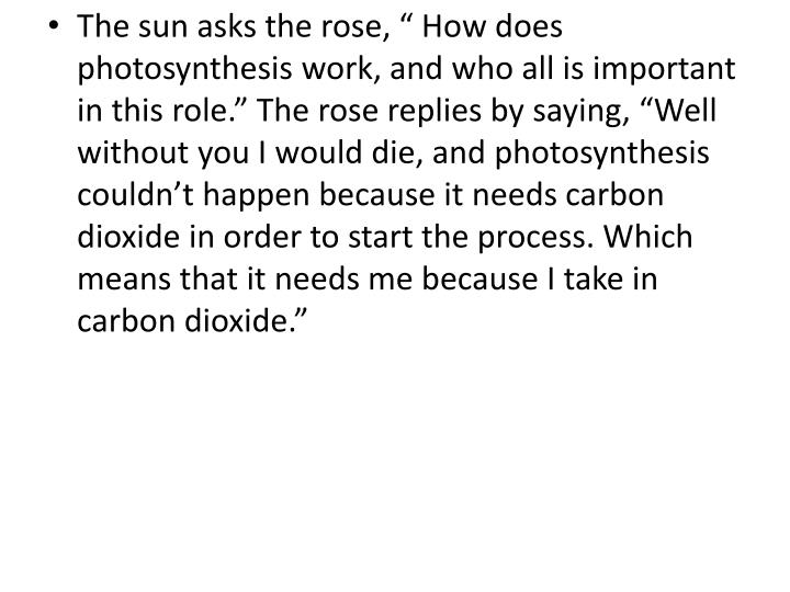 "The sun asks the rose, "" How does photosynthesis work, and who all is important in this role."" The rose replies by saying, ""Well without you I would die, and photosynthesis couldn't happen because it needs carbon dioxide in order to start the process. Which means that it needs me because I take in carbon dioxide."""