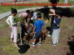 edible landscape project sacramento