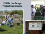 edible landscape project sacramento1