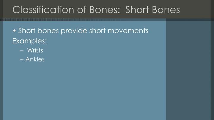 Classification of Bones:  Short Bones
