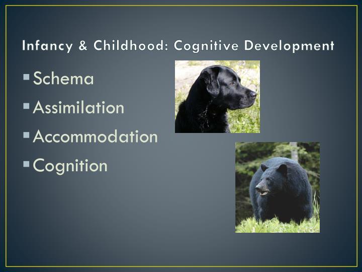 Infancy & Childhood: Cognitive Development