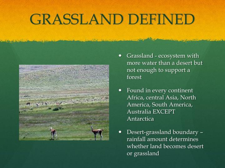 Grassland defined