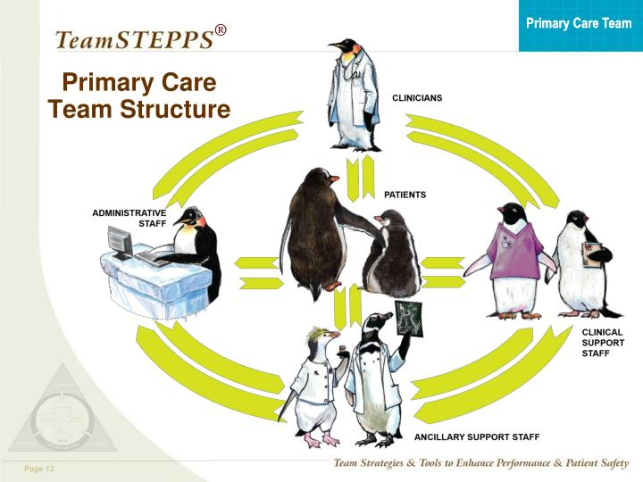 Primary Care Team Structure