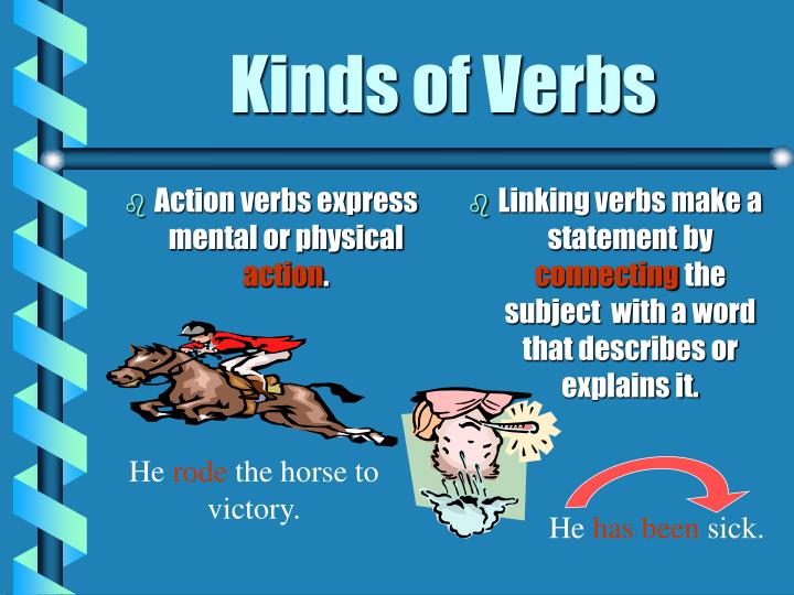 Action verbs express mental or physical