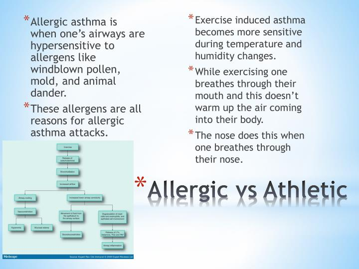 Allergic asthma is when one's airways are hypersensitive to allergens like windblown pollen, mold, and animal dander.