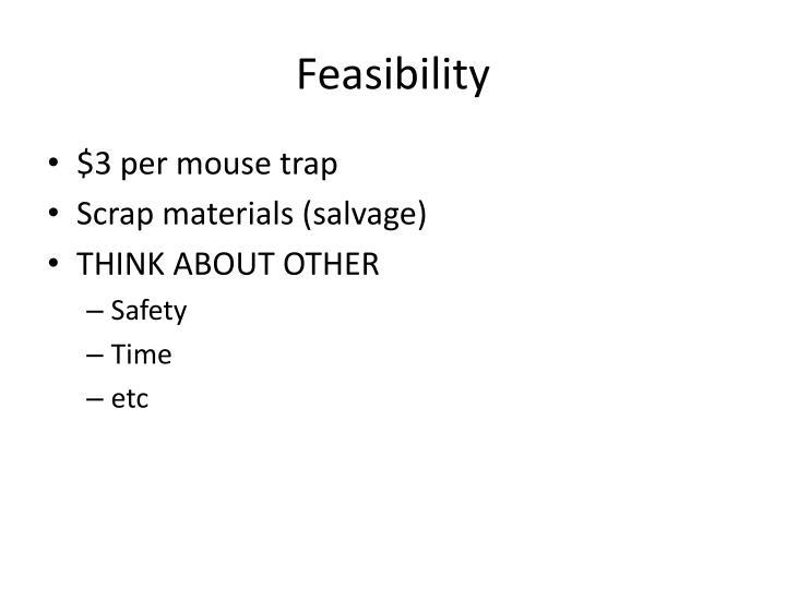 F easibility