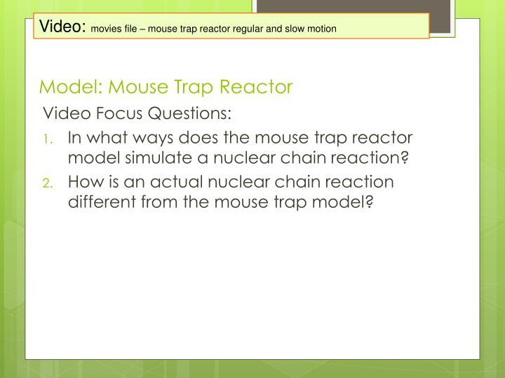 Model mouse trap reactor