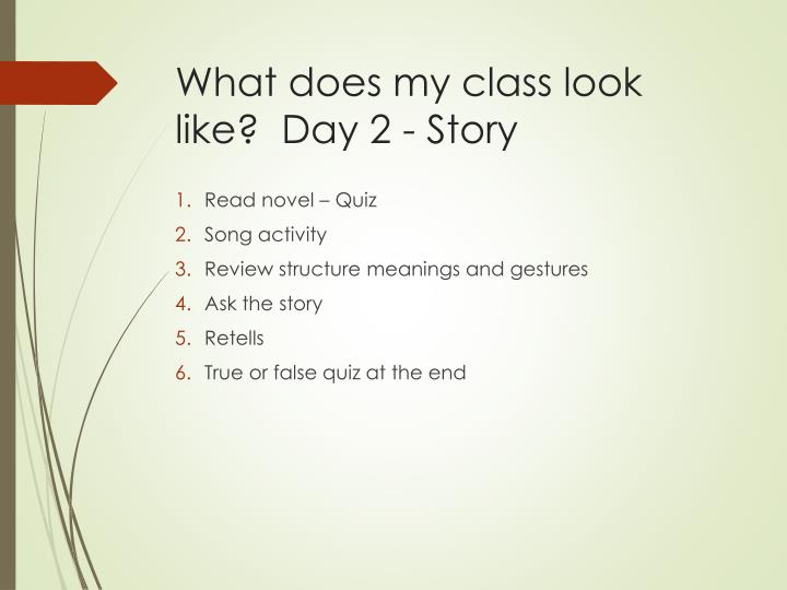 What does my class look like?  Day 2 - Story