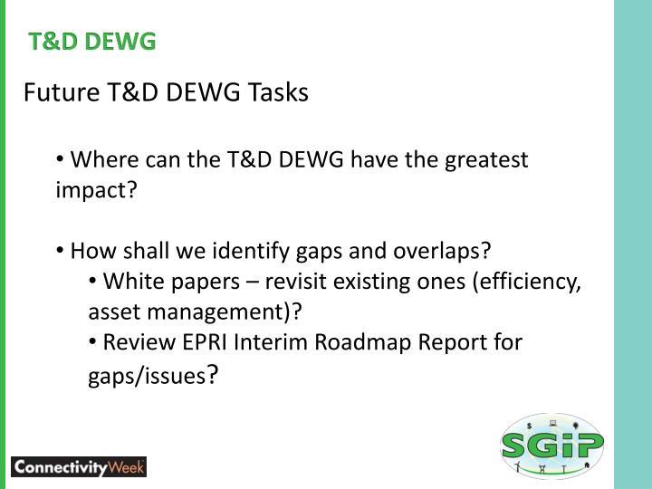 T&D DEWG