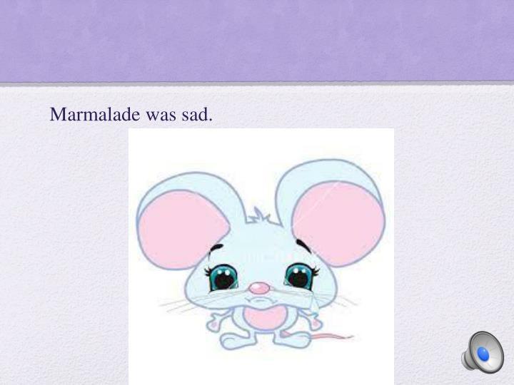 Marmalade was sad.