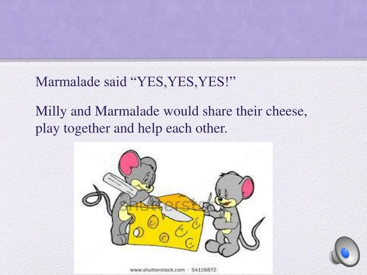 """Marmalade said """"YES,YES,YES!"""""""