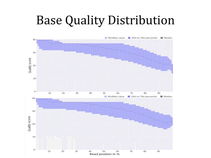 Base Quality Distribution