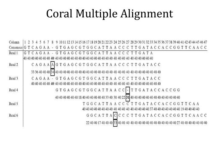 Coral Multiple Alignment