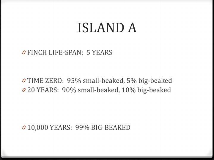 ISLAND A