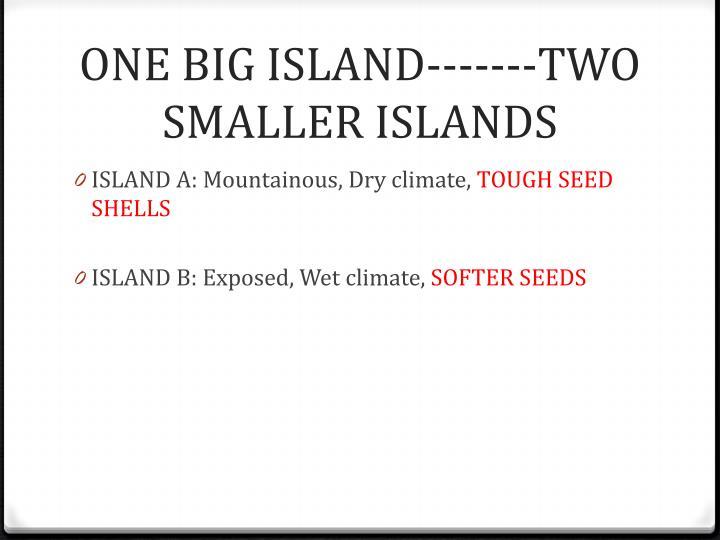 ONE BIG ISLAND-------TWO SMALLER ISLANDS